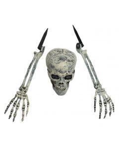 Skelet Buried Alive Decoratie