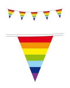 Regenboog Vlaggenlijn 10 m
