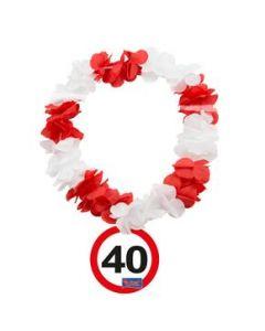 HAWAIKRANS VERKEERSBORD 40